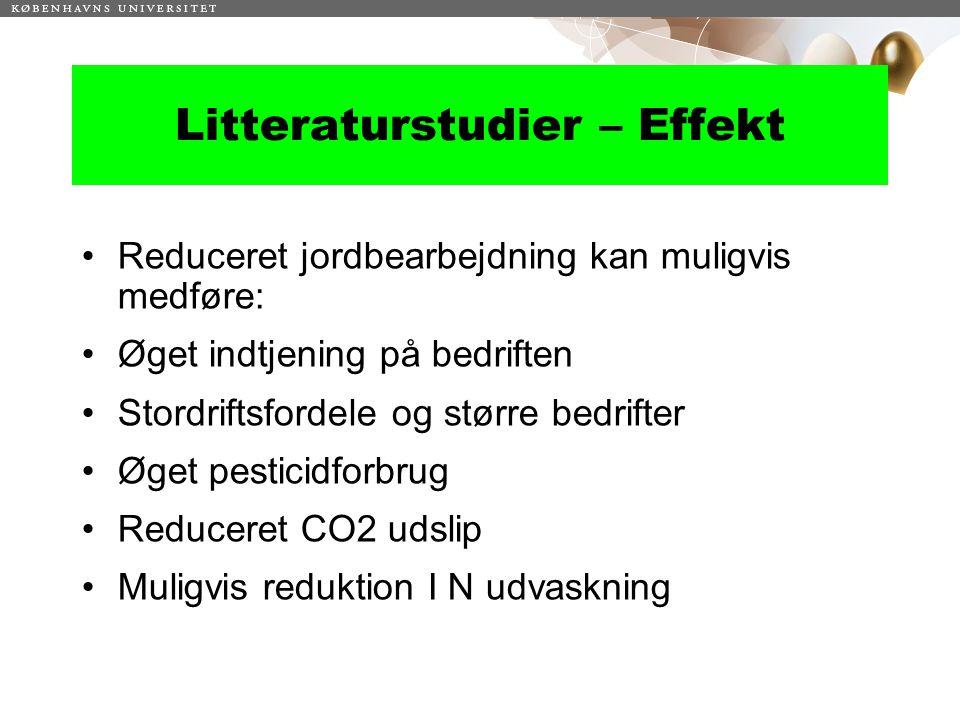 Litteraturstudier – Effekt