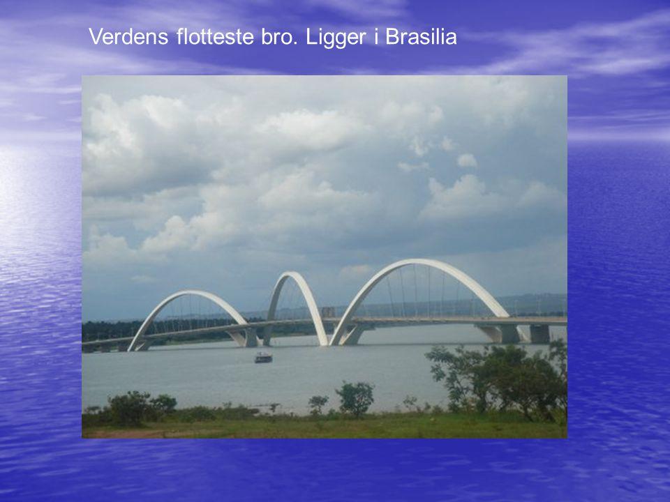 Verdens flotteste bro. Ligger i Brasilia