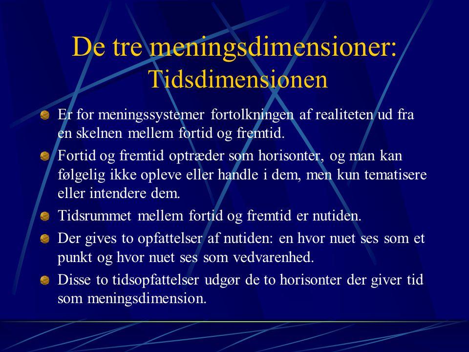 De tre meningsdimensioner: Tidsdimensionen