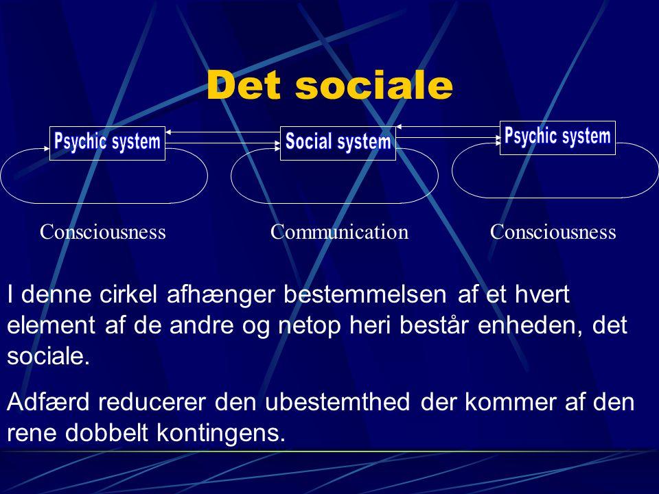 Det sociale Psychic system Social system