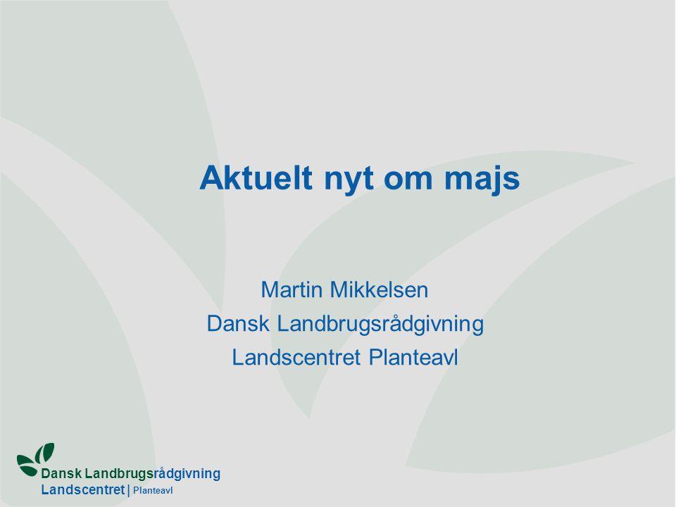 Martin Mikkelsen Dansk Landbrugsrådgivning Landscentret Planteavl