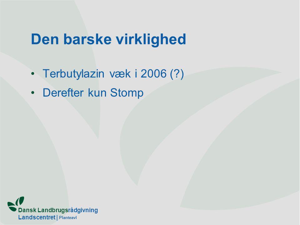 Den barske virklighed Terbutylazin væk i 2006 ( ) Derefter kun Stomp