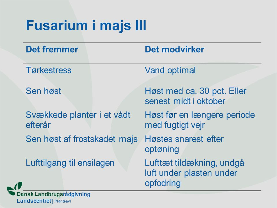 Fusarium i majs III Det fremmer Det modvirker Tørkestress Vand optimal