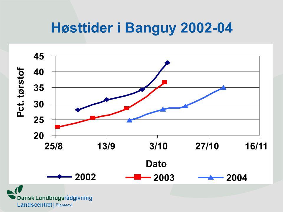 Høsttider i Banguy 2002-04 25/8 13/9 3/10 27/10 16/11 20 25 30 35 40