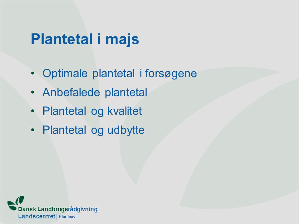Plantetal i majs Optimale plantetal i forsøgene Anbefalede plantetal
