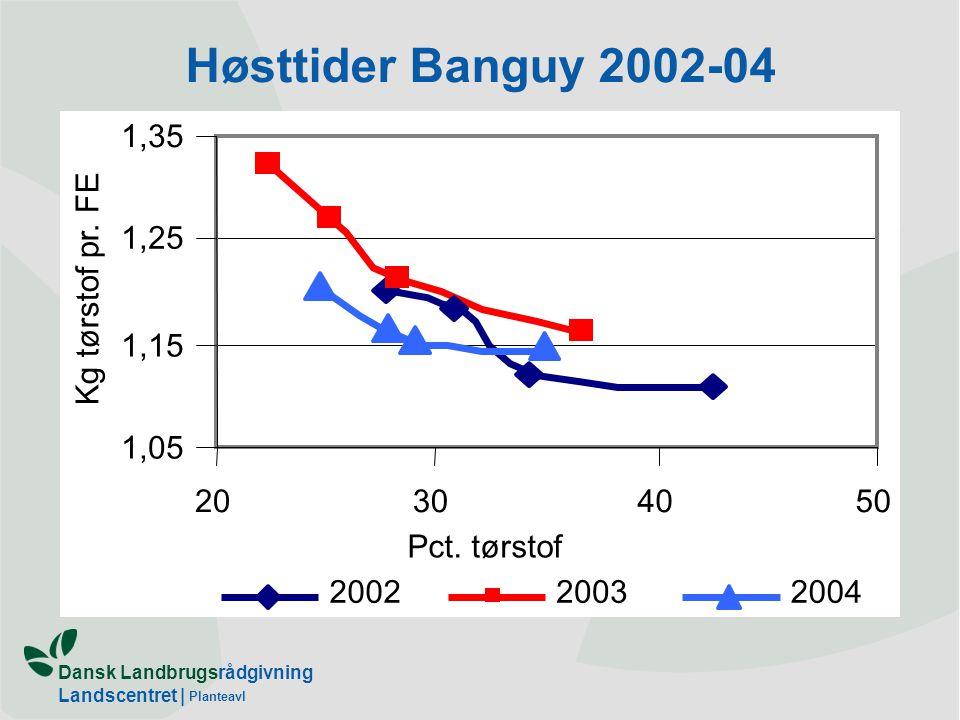 Høsttider Banguy 2002-04 1,05 1,15 1,25 1,35 20 30 40 50 Pct. tørstof