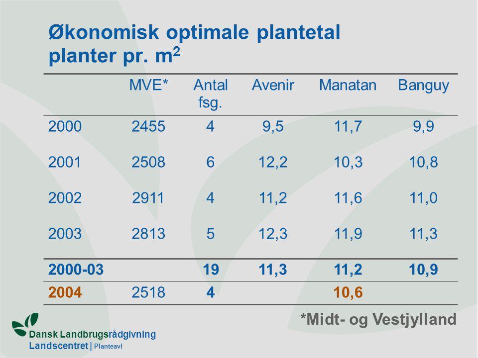 Økonomisk optimale plantetal planter pr. m2