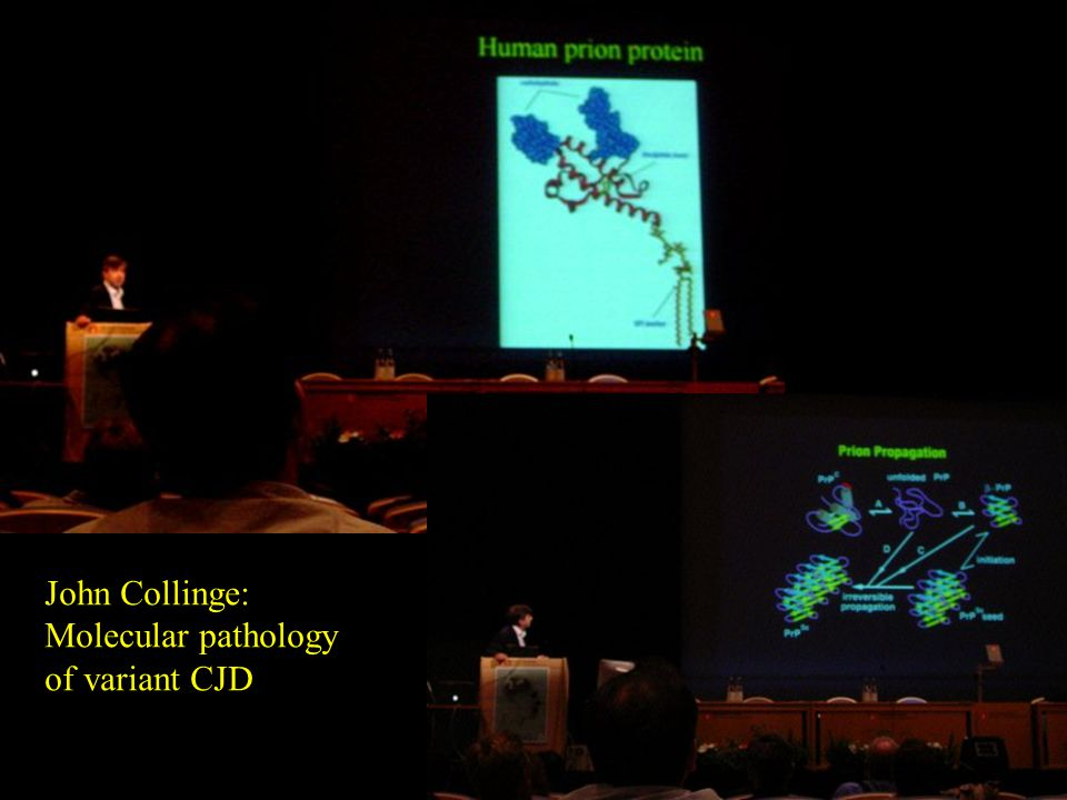 John Collinge: Molecular pathology of variant CJD