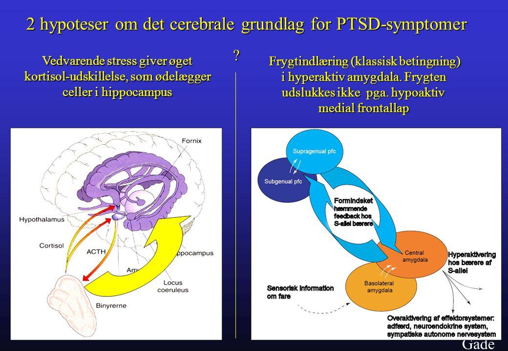 2 hypoteser om det cerebrale grundlag for PTSD-symptomer
