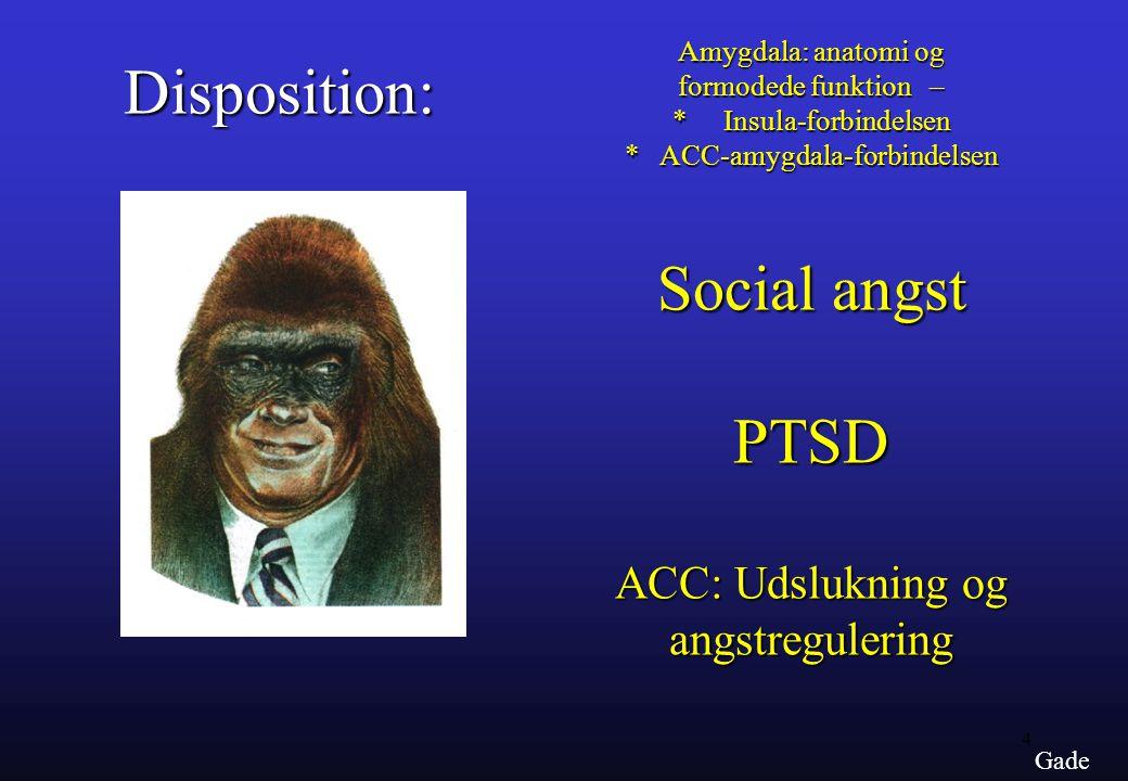Disposition: Social angst PTSD ACC: Udslukning og angstregulering