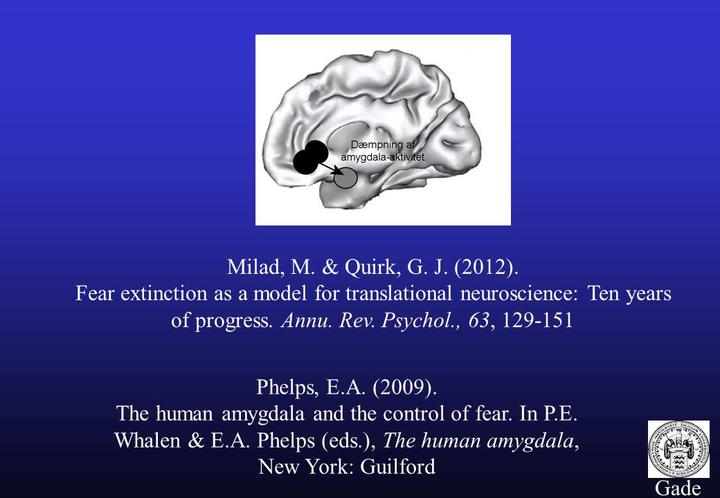Milad, M. & Quirk, G. J. (2012). Fear extinction as a model for translational neuroscience: Ten years of progress. Annu. Rev. Psychol., 63, 129-151