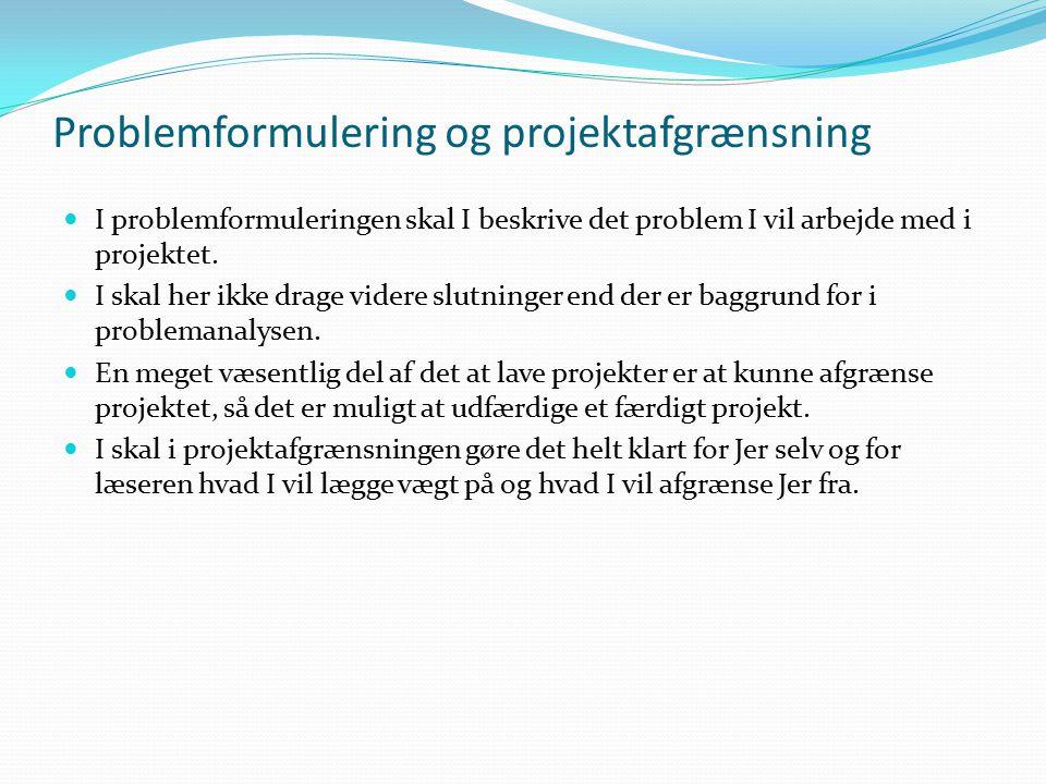 Problemformulering og projektafgrænsning