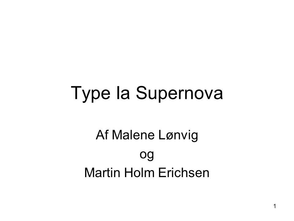 Af Malene Lønvig og Martin Holm Erichsen