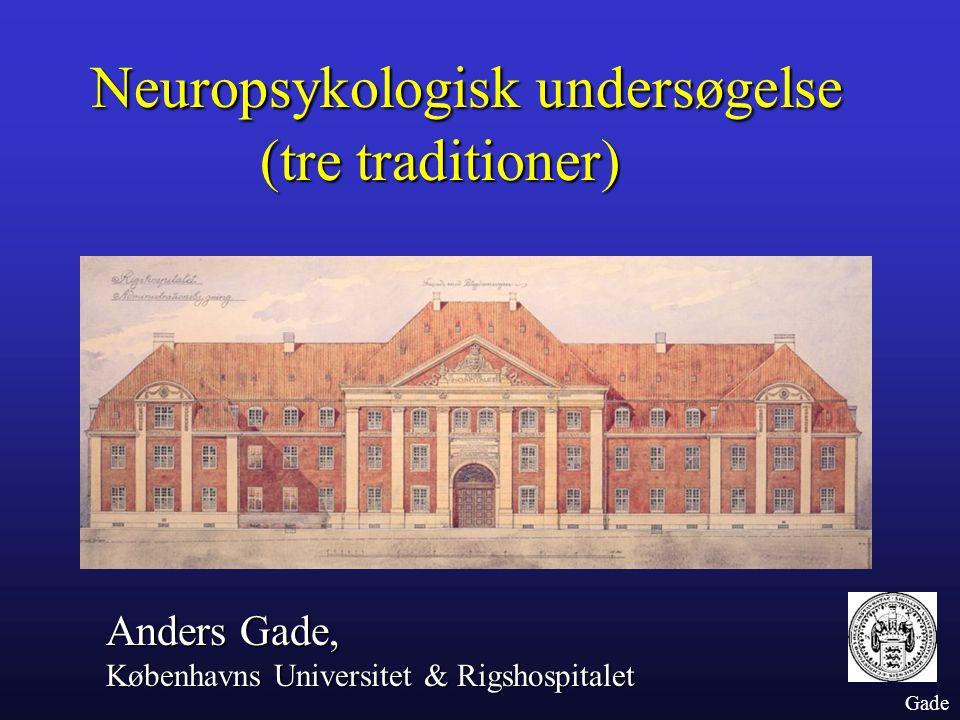 Neuropsykologisk undersøgelse (tre traditioner)