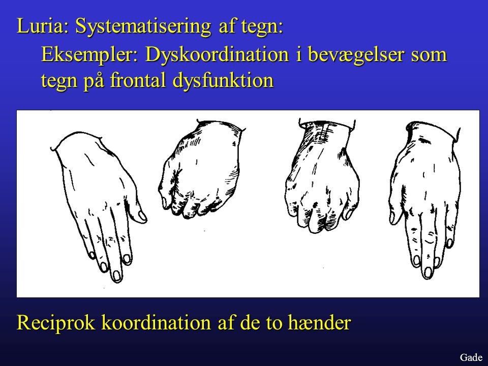 Luria: Systematisering af tegn: