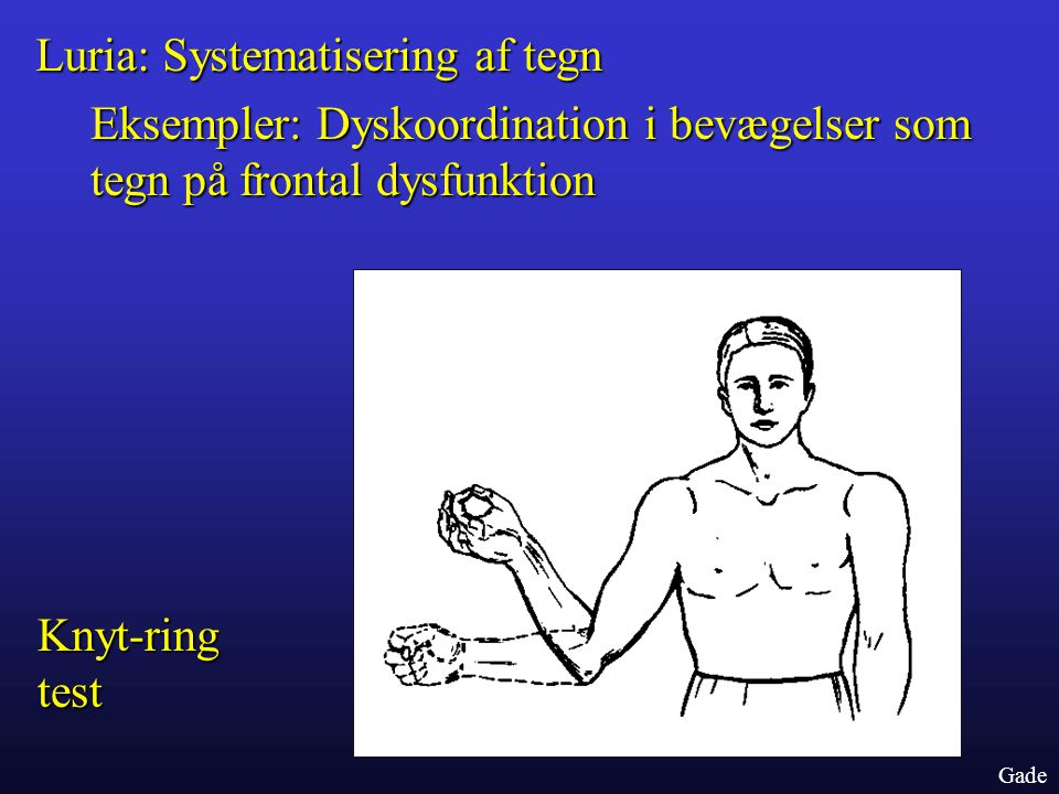 Luria: Systematisering af tegn