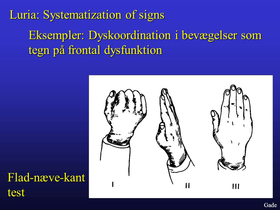 Luria: Systematization of signs