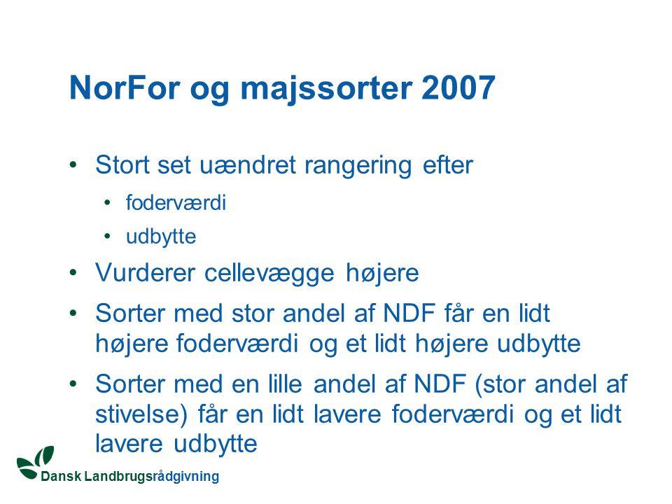 NorFor og majssorter 2007 Stort set uændret rangering efter