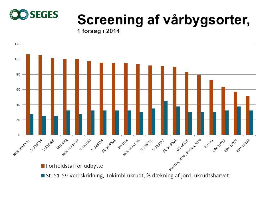 Screening af vårbygsorter, 1 forsøg i 2014