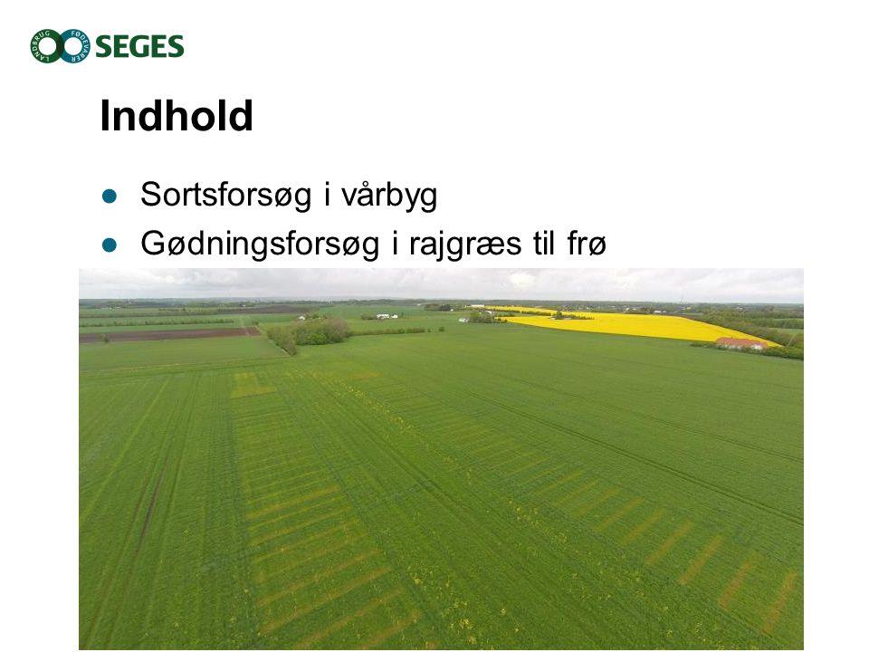 Indhold Sortsforsøg i vårbyg Gødningsforsøg i rajgræs til frø