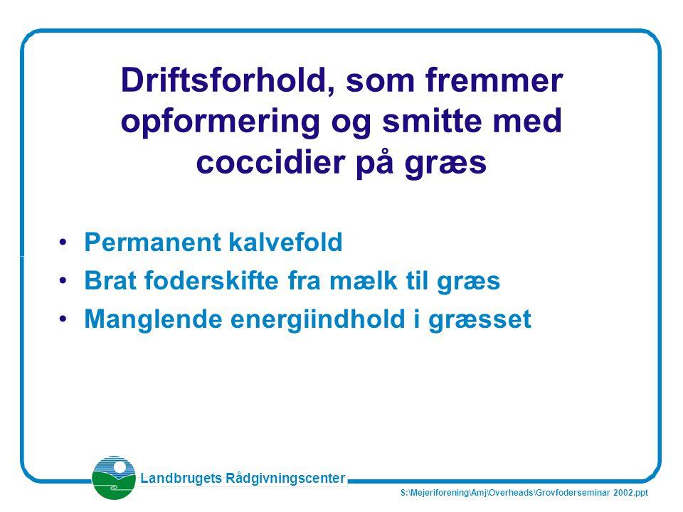 Driftsforhold, som fremmer opformering og smitte med coccidier på græs