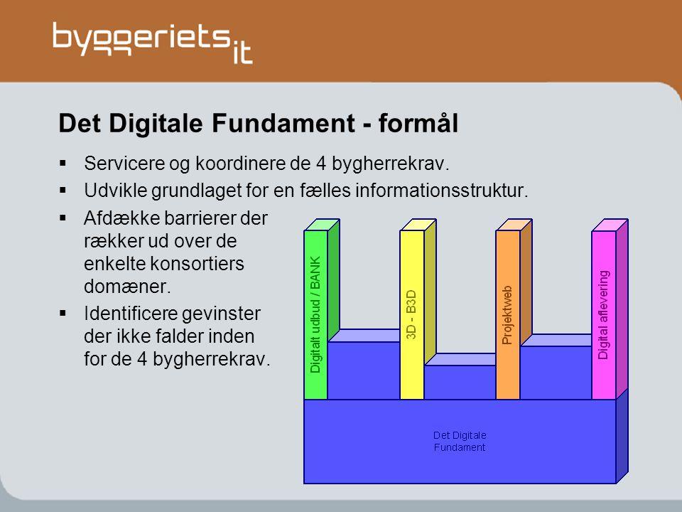Det Digitale Fundament - formål