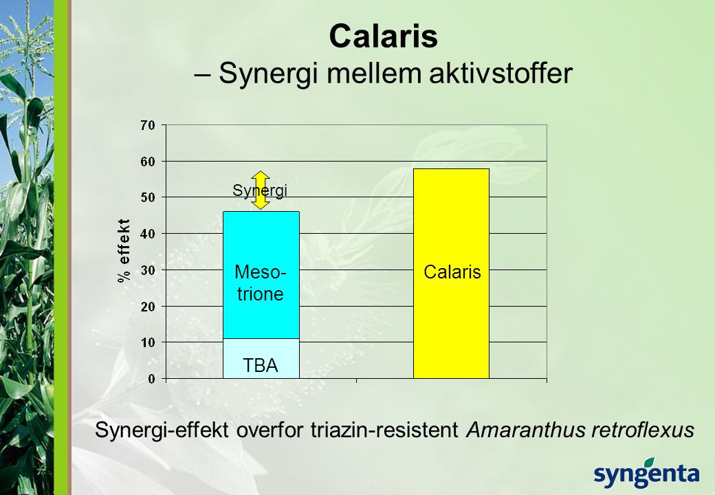 Calaris – Synergi mellem aktivstoffer