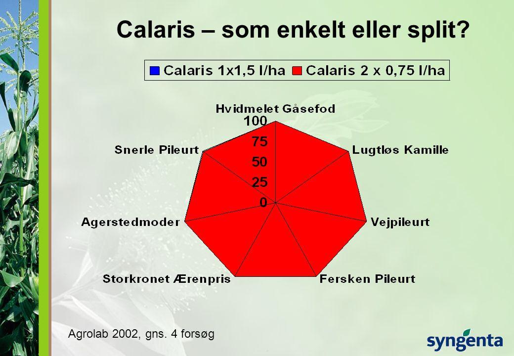 Calaris – som enkelt eller split