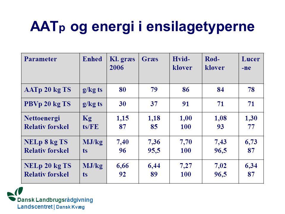 AATp og energi i ensilagetyperne