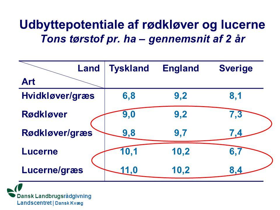 Udbyttepotentiale af rødkløver og lucerne Tons tørstof pr