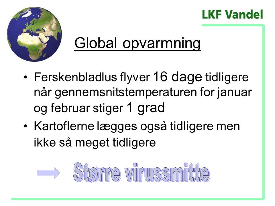 Global opvarmning Større virussmitte