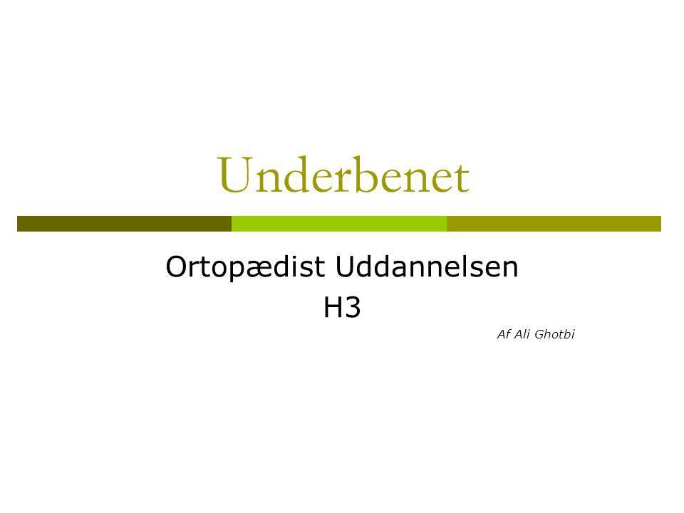 Ortopædist Uddannelsen H3 Af Ali Ghotbi