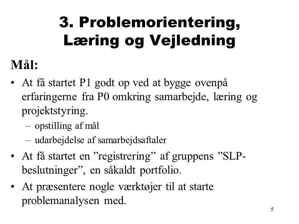3. Problemorientering, Læring og Vejledning