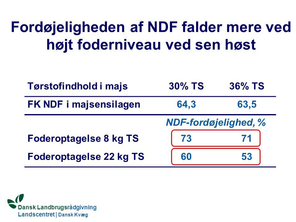 Fordøjeligheden af NDF falder mere ved højt foderniveau ved sen høst