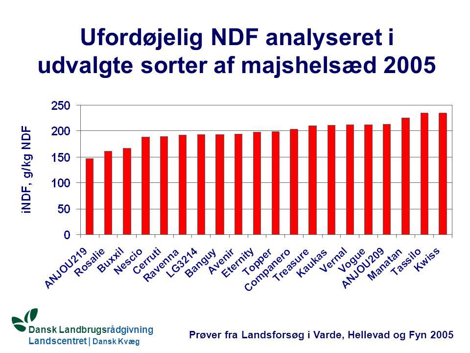 Ufordøjelig NDF analyseret i udvalgte sorter af majshelsæd 2005
