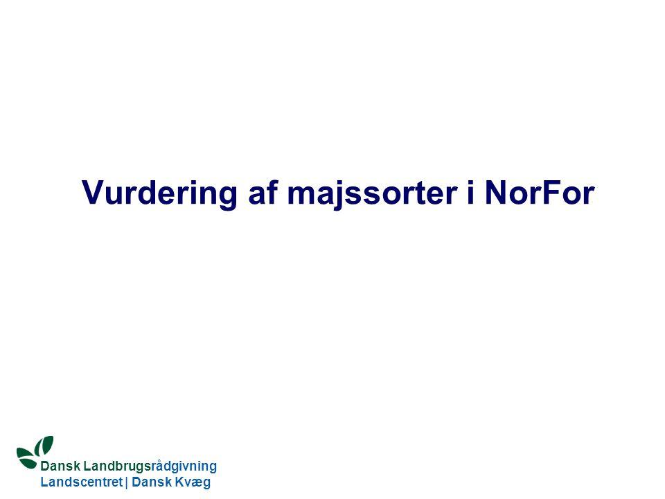 Vurdering af majssorter i NorFor