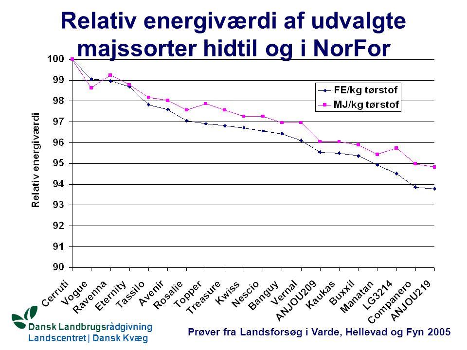 Relativ energiværdi af udvalgte majssorter hidtil og i NorFor