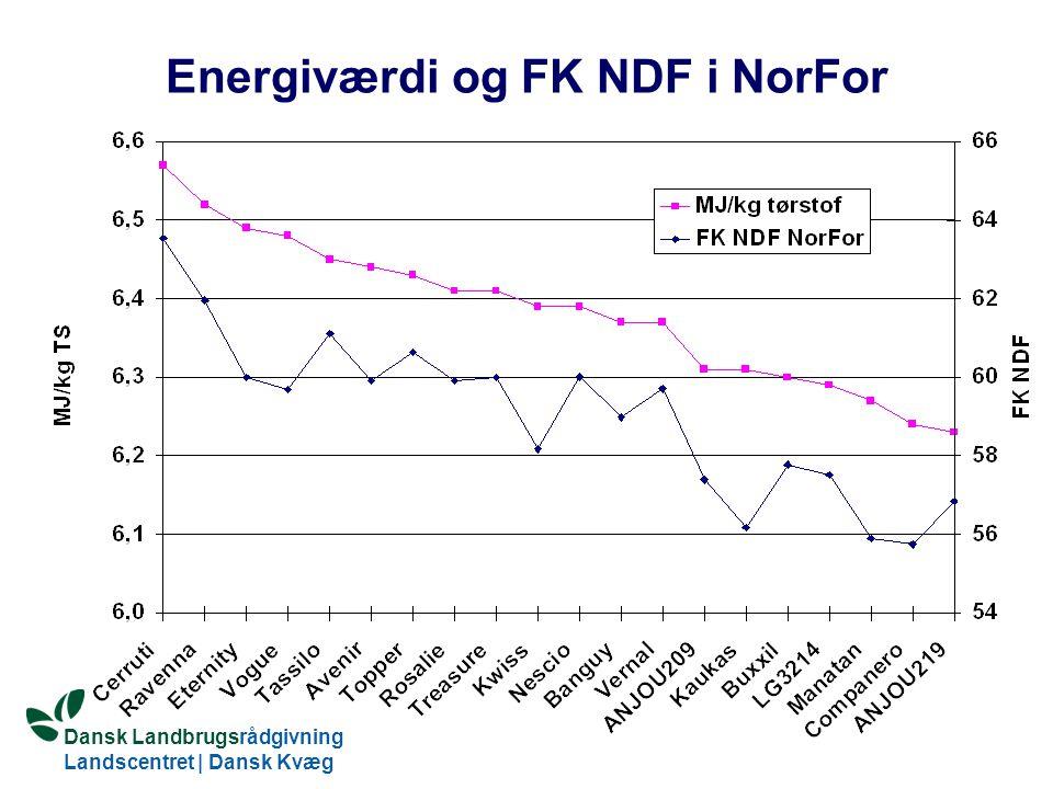 Energiværdi og FK NDF i NorFor
