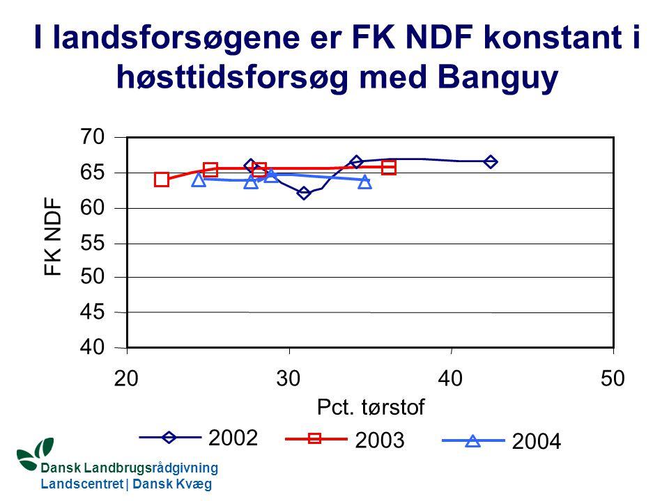 I landsforsøgene er FK NDF konstant i høsttidsforsøg med Banguy