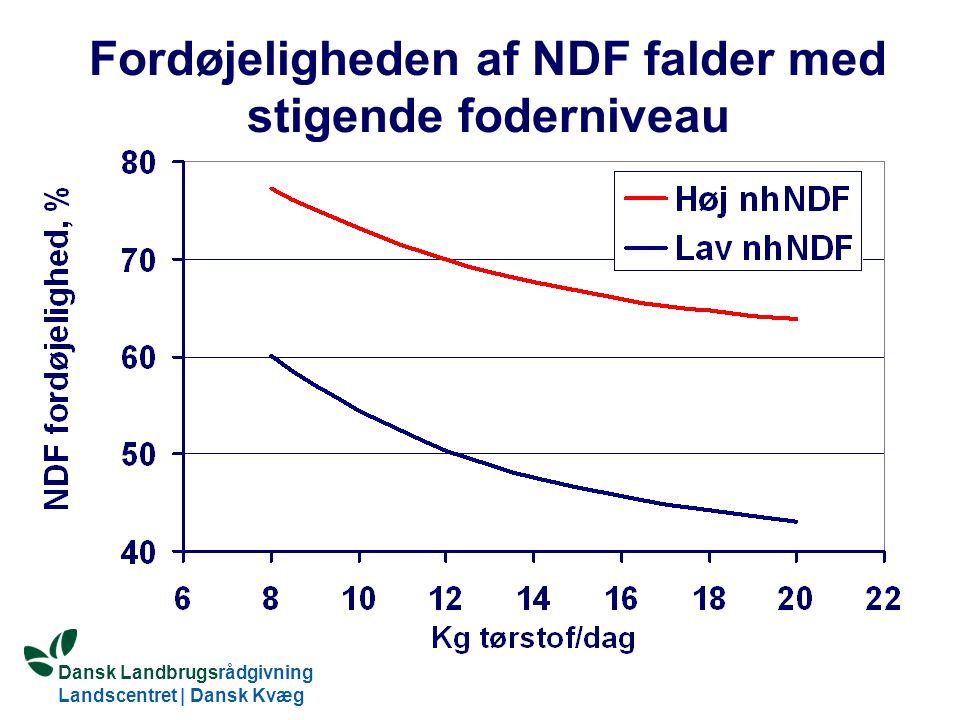 Fordøjeligheden af NDF falder med stigende foderniveau