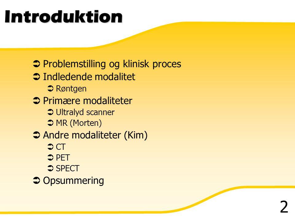 Introduktion Problemstilling og klinisk proces Indledende modalitet