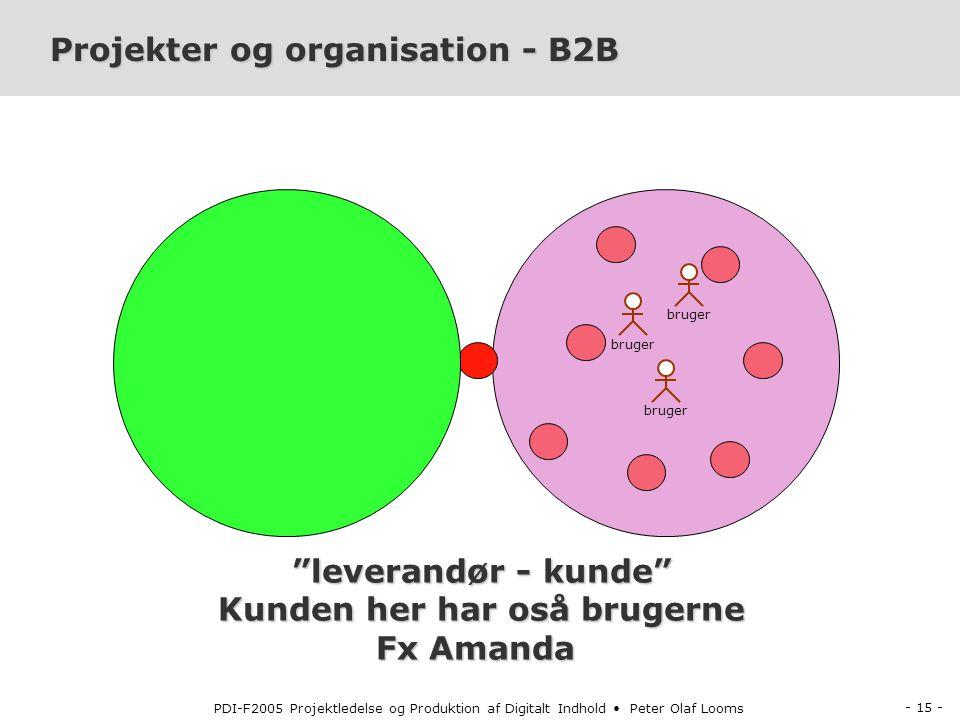 Projekter og organisation - B2B
