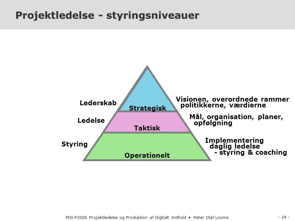 Projektledelse - styringsniveauer