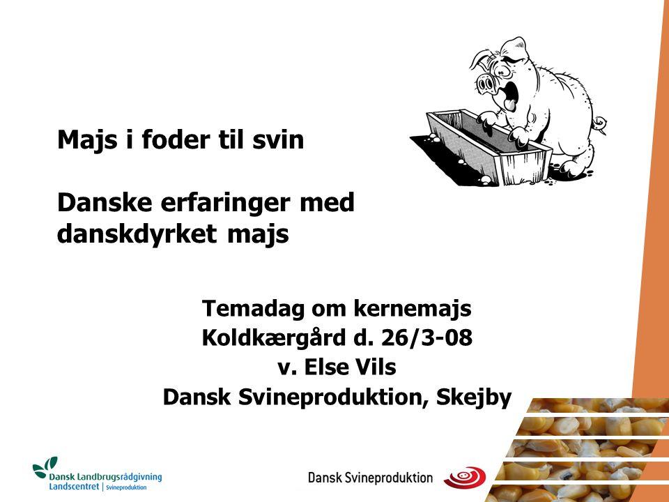 Majs i foder til svin Danske erfaringer med danskdyrket majs