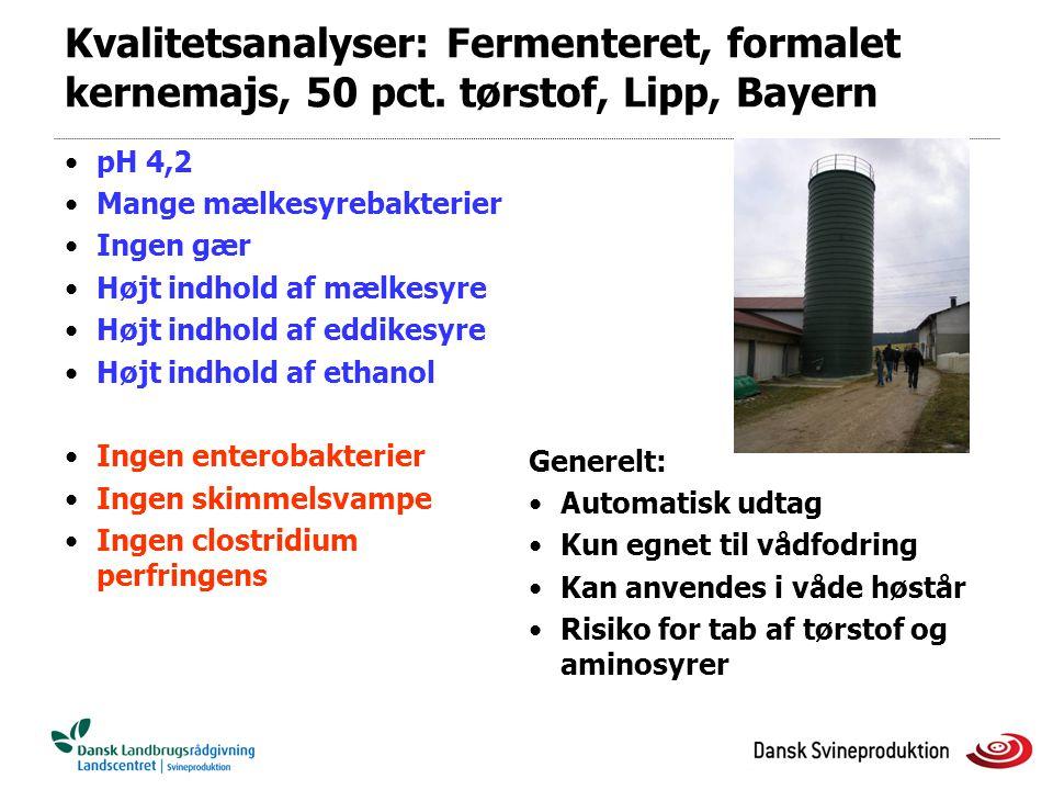 Kvalitetsanalyser: Fermenteret, formalet kernemajs, 50 pct