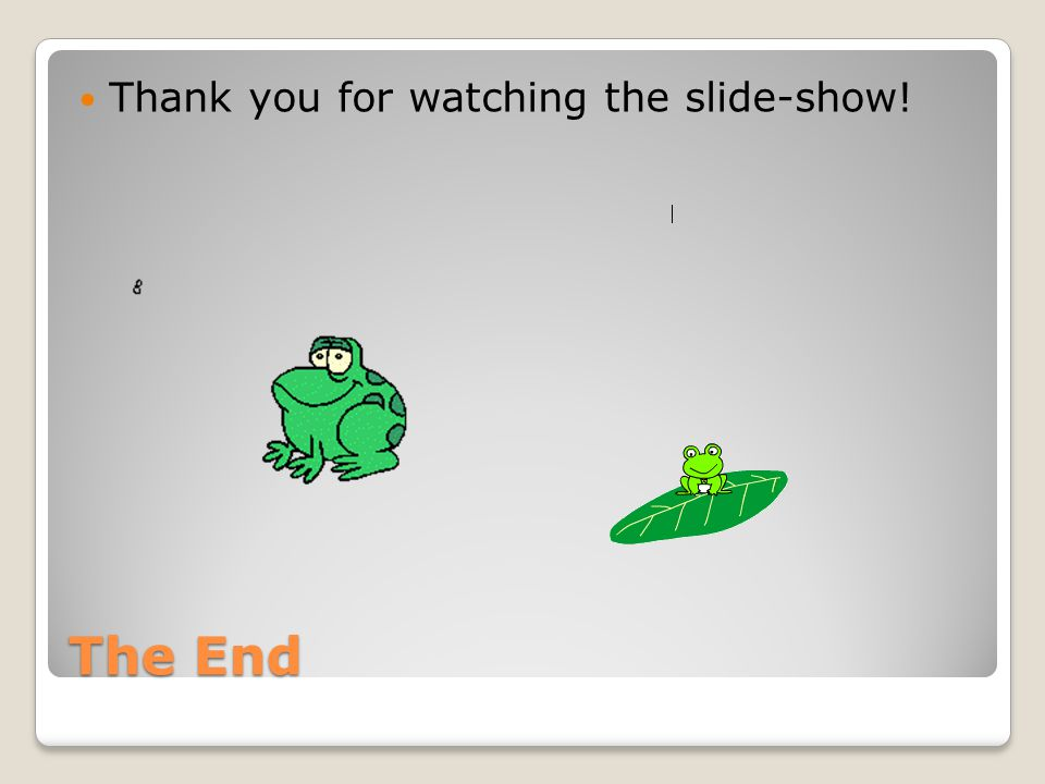 Thank you for watching the slide-show!