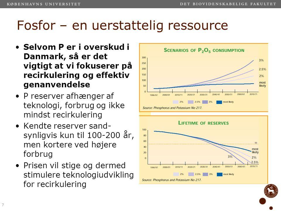 Fosfor – en uerstattelig ressource