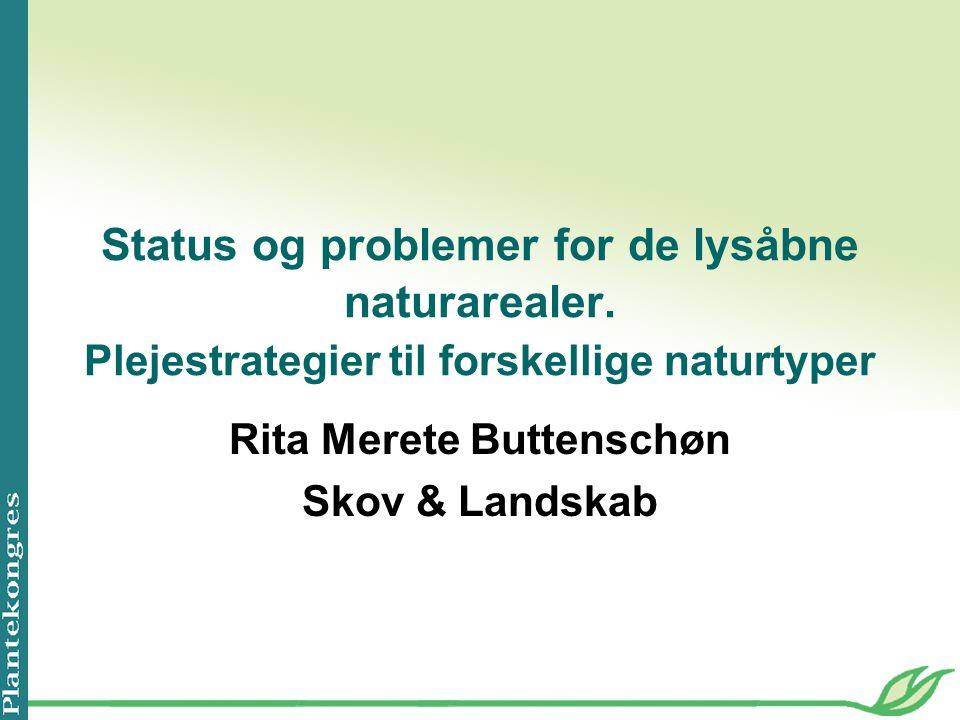 Rita Merete Buttenschøn Skov & Landskab