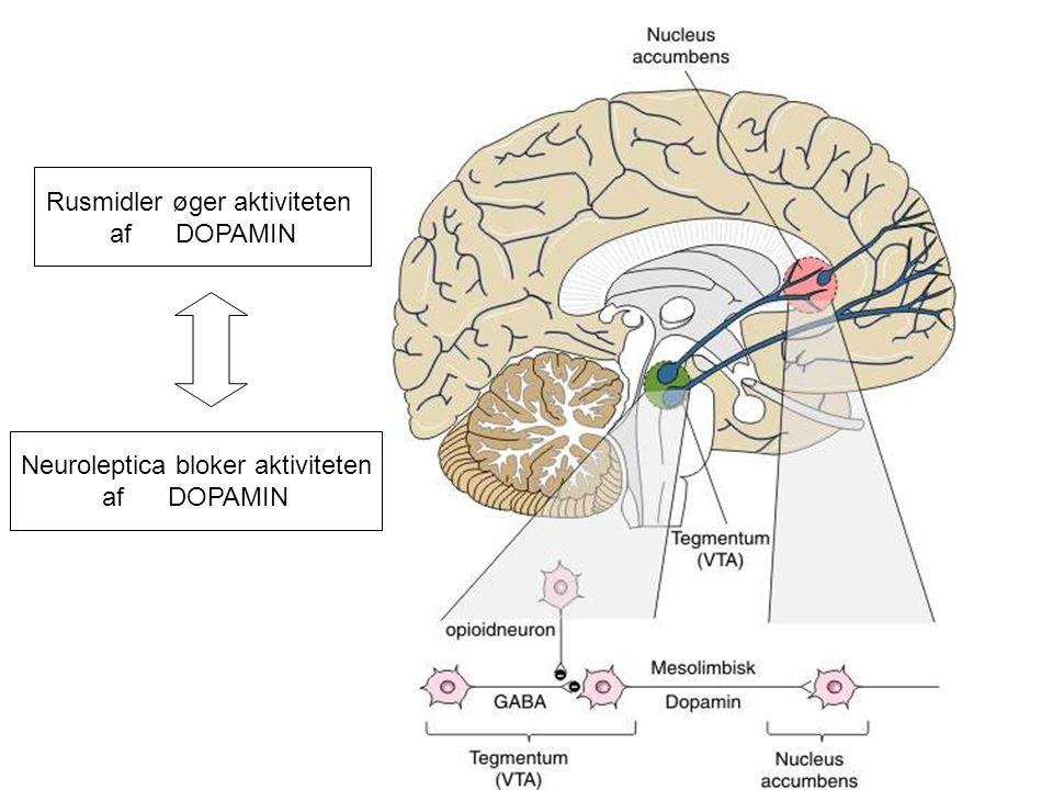 Rusmidler øger aktiviteten af DOPAMIN