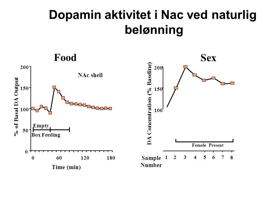 Dopamin aktivitet i Nac ved naturlig DA Concentration (% Baseline)